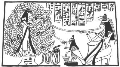 Fig. 6.7 Egyptian tree goddess